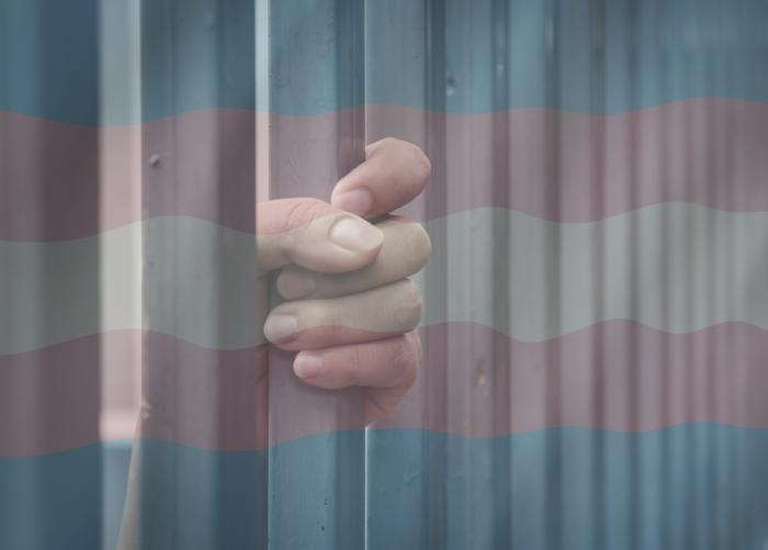 Transgender Woman Sues Georgia Corrections Officials Again