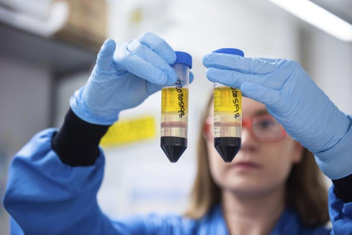 In this undated file photo issued by the University of Oxford on Monday, Nov. 23, 2020, a researcher in a laboratory at the Jenner Institute in Oxford, England, works on the coronavirus vaccine developed by AstraZeneca and Oxford University.