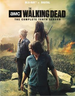 Review: All Roads Lead To This Very Moment in 'The Walking Dead - The Complete Tenth Season'