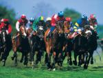 The Biggest Events in the Horse Racing Calendar in Canada and the US